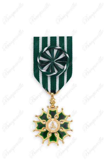 Arts et Lettres - Officier